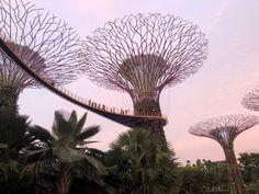 Kota Bharu, Kuala Lumpur, Marina Bay Sands, Fair Grounds, Travel, Borneo, Malaysia, Paths, Viajes