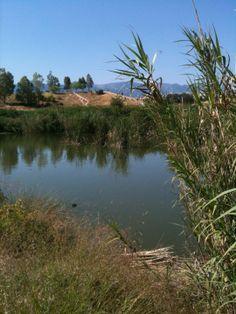 Πάρκο Περιβαλλοντικής Ευαισθητοποίησης «Αντώνης Τρίτσης»