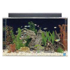 SeaClear Rectangular Aquarium Combo   Petco Store