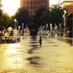Fun & Inexpensive Things to Do with Kids in St. Louis {Our Vacation} - Love of Family & Home