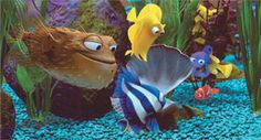 When I'm a psychologist and I have my own office, I'm going to have the Finding Nemo fish tank in it. with the exact set up and same fishies.