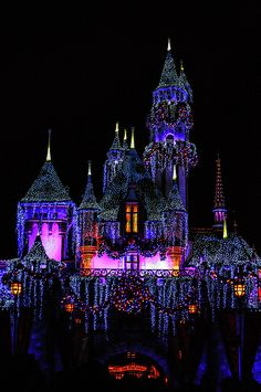 Disneyland Photograph - Disneyland Christmas 2 by Tommy Anderson