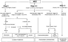 Barcelona clinical liver cancer (BCLC) staging system.