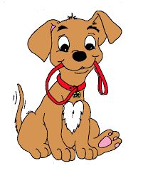 The Science Behind Dog Training: Learning Theory for Dog Owners Dog Clip Art, Hyper Dog, Sleepy Dogs, Learning Theory, Dog Daycare, Beginning Of School, Havanese, Brain Teasers, Dog Park