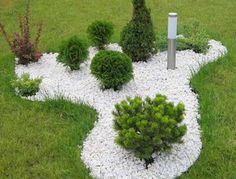 Хвойные в ландшафтном дизайне: правила посадки, виды и сорта растений + фото