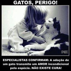 Não tem cura mesmo! <3 :)  #petmeupet #gato #amogatos