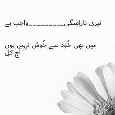 Meri diary se Poetry Pic, Sufi Poetry, Love Poetry Urdu, Urdu Quotes, Poetry Quotes, Book Quotes, Life Quotes, Qoutes, Love Romantic Poetry