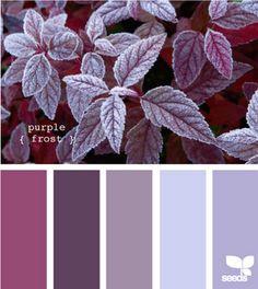 purple Frost from design seeds Colour Pallete, Colour Schemes, Color Combos, Color Patterns, Color Palettes, Color Charts, Design Seeds, World Of Color, Color Of Life