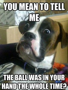 Funny Dog Meme Ball In Hand Fridge Magnet 5 X 3 5 Funnymemes