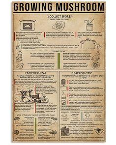Survival Life Hacks, Survival Tips, Survival Skills, Homemade Books, Mushroom Cultivation, Chemistry Experiments, Growing Mushrooms, Gsm Paper, Useful Life Hacks