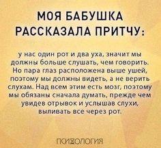 Фотографии на стене сообщества – 68 832 фотографии | ВКонтакте