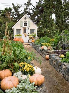 a raised garden idea