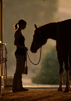 Country Brown - Silhouettes - Girl & Her Horse. All The Pretty Horses, Beautiful Horses, Animals Beautiful, Horse Photos, Horse Pictures, Zebras, Country Life, Country Girls, Country Living