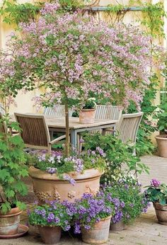 Small courtyard gardens - 37 Fresh Cottage Garden Ideas for Front Yard and Backyard Inspiration – Small courtyard gardens Small Flower Gardens, Small Courtyard Gardens, Courtyard Design, Small Courtyards, Patio Design, Plants For Small Gardens, Small Front Gardens, Diy Design, Design Jardin