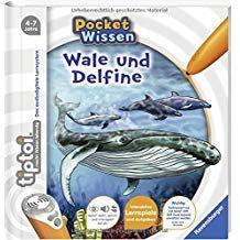 Tiptoi Wale Und Delfine Tiptoi Pocket Wissen Und Wale Tiptoi Wissen Wale Und Delfine Wale Tiptoi