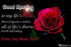 Good Morning Wishes Images Wallpaper Pics Websites Good Morning Love Sms, Good Morning Google, Cute Good Morning Texts, Beautiful Morning Quotes, Good Morning Picture, Good Night Image, Good Morning Images, Inspirational Morning Messages, Morning Quotes Images