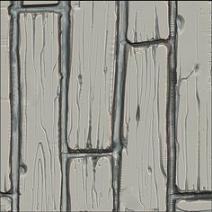 Картинки по запросу wood zbrush