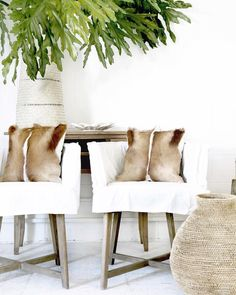 dining chair covers in spanish fishing second hand 1414 best black and white mexican adobe images 2019 guatemala
