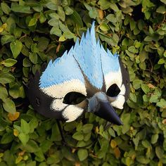 Blue Jay Bird Leather Mask Halloween Mountain by LMEanimals
