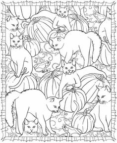 welcome to dover publications free sample pages you can sign up at the site