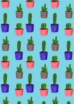 Elif Demir - Cacti
