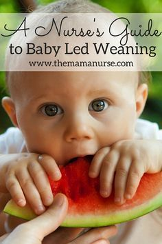 A Nurse's Guide to Baby Led Weaning. Current recommendations regarding finger foods, starting solids at 6 months and baby led weaning.