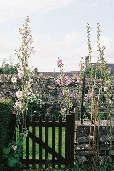 Locronan (by tetsumaru) Beautiful Gardens, Beautiful Flowers, Photos Voyages, Hollyhock, Garden Gates, Dream Garden, Garden Inspiration, The Great Outdoors, Garden Plants