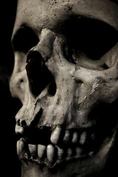 This reminds me of Hamlet because this is something that really represents Hamlet.  In the graveyard he sees the skull of an old friend of his.  This is also a bug part because its foreshadowing that everybody dies.