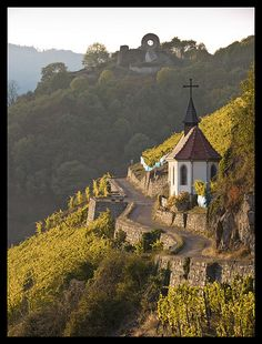 Chapelle Saint -Urbain, Thann (Alsace, France) What a gorgeous view.