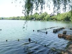 West Lake view of #Hanzhou 西湖留影