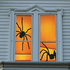 Shady Spiders and Menacing Mummy Window Panels