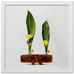 Печать на холсте. Картина 30х30 см в раме. Plants, Home Decor, Flower Arrangements, Decoration Home, Room Decor, Plant, Home Interior Design, Planets, Home Decoration