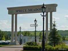Spruce Meadows Calgary|Top 10 Calgary attraction