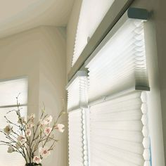 Hunter Douglas Applause Honeycomb shades for living room                                                                                                                                                                                 More