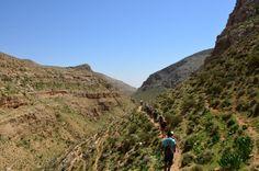 Wanderung irgendwo im Nirgendwo (Palästina)