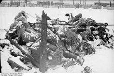 A German picture from January 1942 of a pile of frozen corpses, stated to be Russian, stacked in the snow.