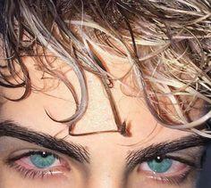 ɪᴄᴇʟᴀɴᴅ ғᴏx #Eye #Aesthetic #Photography