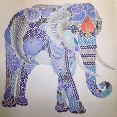 #milliemarotta #tropicalwonderland #elephant #adultcolouring #polychromos #stabilo68 #relax #coloriage #coloriagepouradulte #coloriageantistress #creativecolouring #instapic #instahub