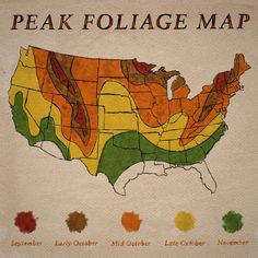 Peak Foliage Map (if you are looking to get some lovely fall color photos)