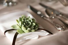 succulent place setting~ #modern #thanksgiving