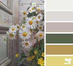 summer tones