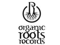 #ROOTS #DUB #MUSICA #CROWDFUNDING - Organic Roots Records es un sello disgográfico dedicado a la expansión de la cultura Roots y Dub. Esta vez en una perfecta combinación con el artista inglés residente en España, Don Fe, presentando un disco que promete llegar con fuerza, tras el éxito de su anterior álbum, 'Weep Not'. +INFO http://www.organicrootsrecords.net crowdfunding verkami http://www.verkami.com/projects/9073-organic-roots-records-presents-don-fe-i-volution