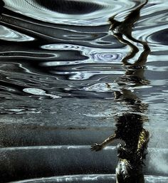 photos taken from under the water's surface by laurel johannesson