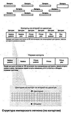 Структура легиона принципата