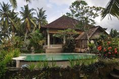 Featuring a restaurant, an outdoor swimming pool, and a shared lounge, Puri Puncak Bukit Villa provides accommodation in Ubud with free WiFi and pool. Outdoor Swimming Pool, Swimming Pools, Cafe Bar, Ubud, Front Desk, Ground Floor, Perfect Place, Holiday Ideas, Terrace