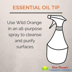 Wild Orange smells amazing and I love how versatile all of the oils are especially Wild Orange. Put a few drops of Wild Orange in an all-purpose spray and it will cleanse and purify your surfaces.   #essentialoils #essentialtips