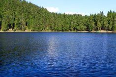 Selva Negra, Alsacia y Lago Constanza -Diarios de Viajes de Alemania- Chryslyman - LosViajeros