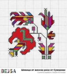 Шевица от Суворово – Vezba