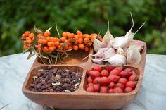 krople Toda to kompozycja ziołowa dla zdrowia naczyń krwionośnych