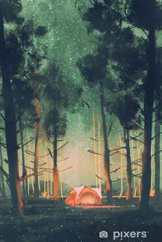 camping in forest at night with stars and fireflies,illustration,digital painting Vinyl Wall Mural - Hobbies and Leisure Camping Illustration, Abstract Illustration, Forest Illustration, Night Illustration, Forest Drawing, Forest Painting, Forest Art, Forest Mural, Camping Ideas